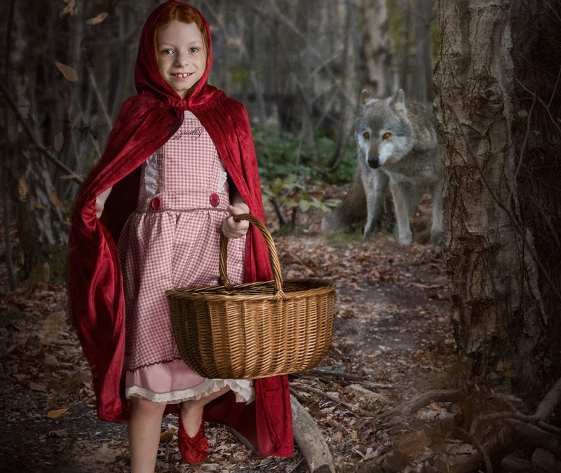 wildlife story telling red riding hood