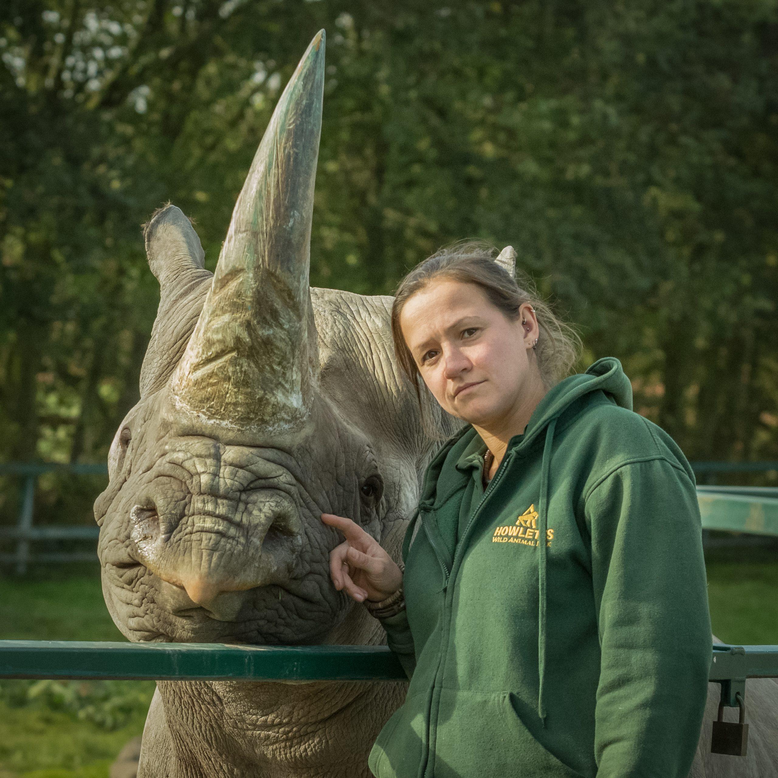howletts black rhino
