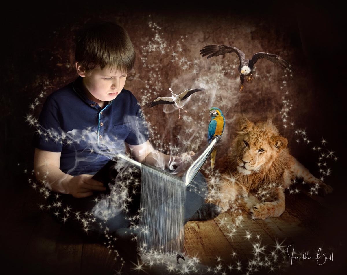 wildlife book boy